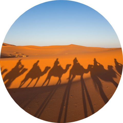 SILK ROAD IMAGE OF CAMELS IN SHADOW
