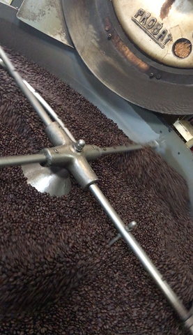 Weaver's Organic Blend coffee in the cooling tray of the Probat Coffee Roaster