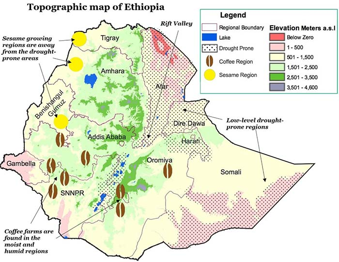 ethiopian coffee map