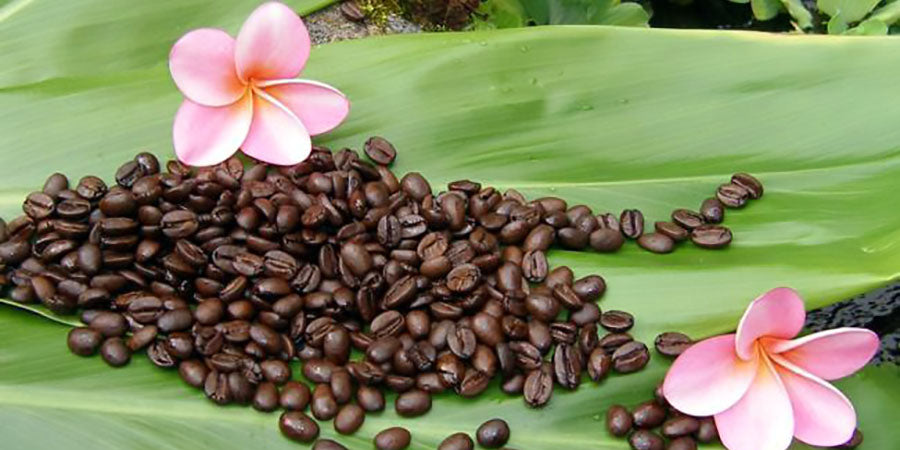 Kona Reserve Coffee