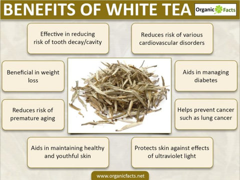 Health Benefits of White Tea - Mystic Dragon White Tea