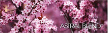 Astral Blend Coffee: Artisan Coffee For A Cause Featuring a full-bodied blend.