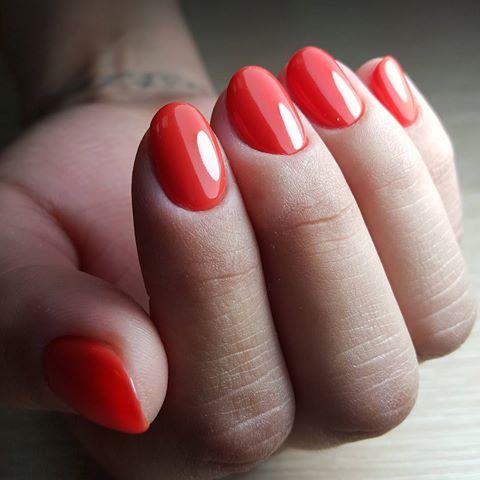 Akzentz Luxio - Formidable - The Nail Hub
