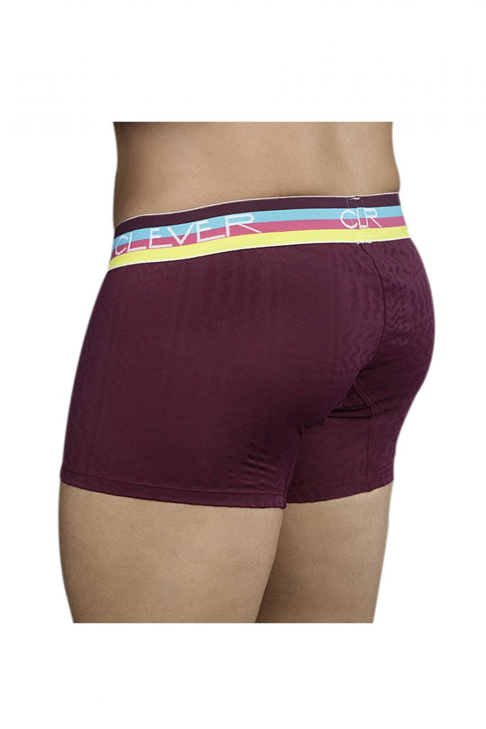 Clever 2099 Limited Edition Boxer Briefs Color Grape-63
