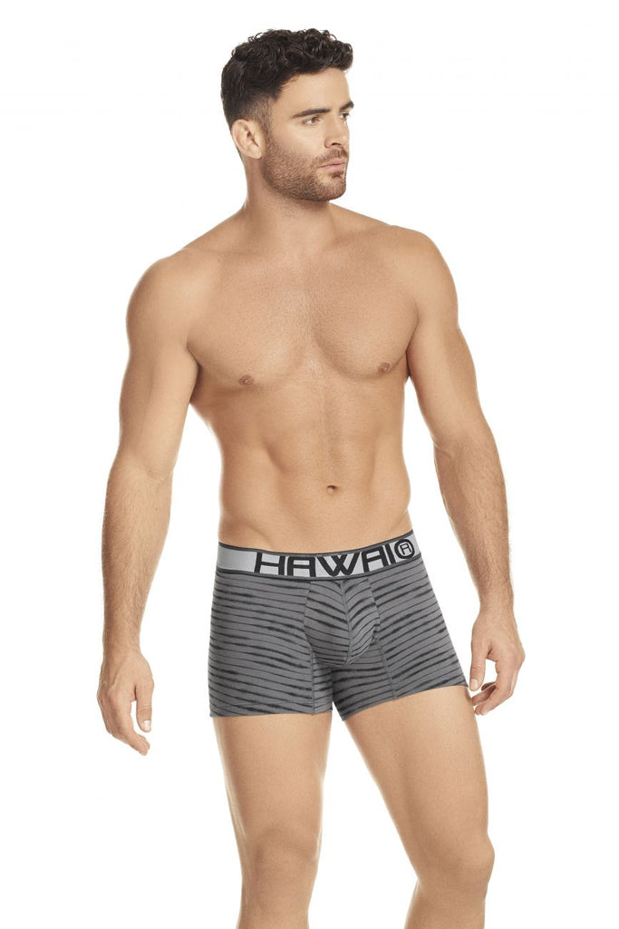 HAWAI 41972 Boxer Briefs Color Gray