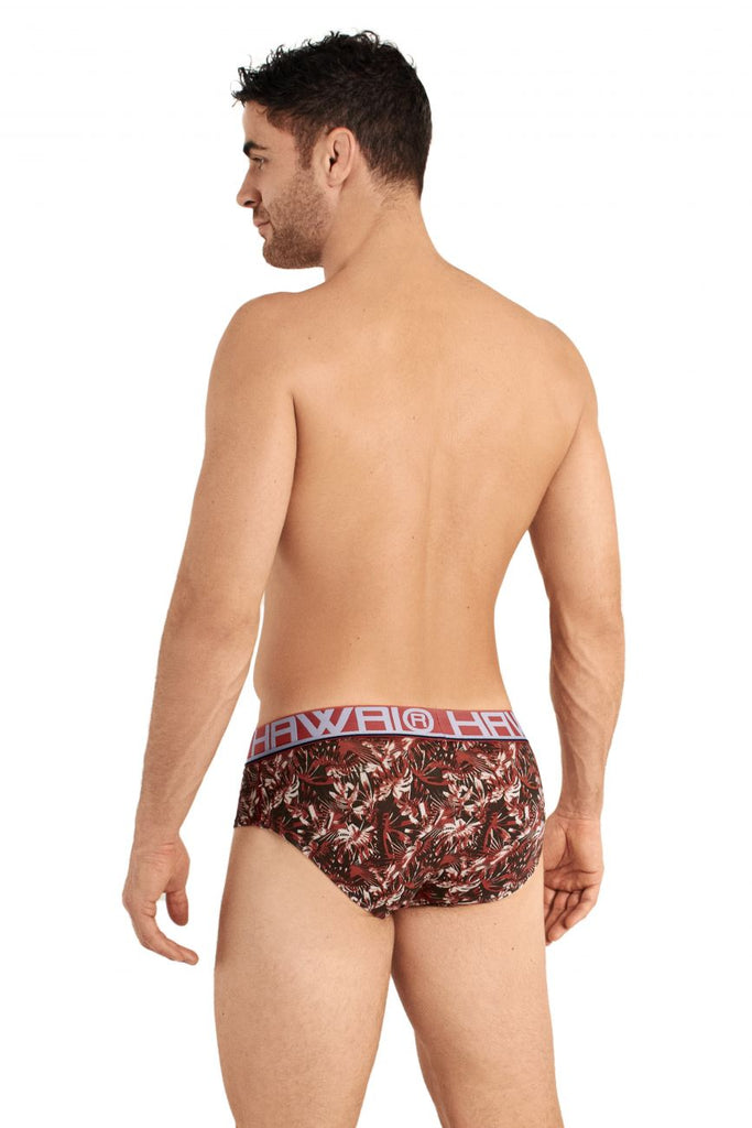 HAWAI 42026 Briefs Color Terracotta