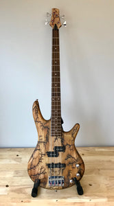 Electrocuted Bass Guitar - Andalog