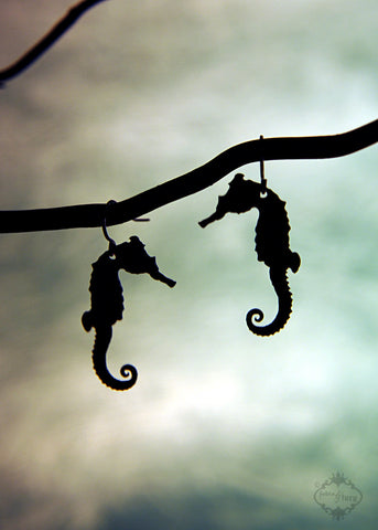 Seahorse Earrings in black stainless steel