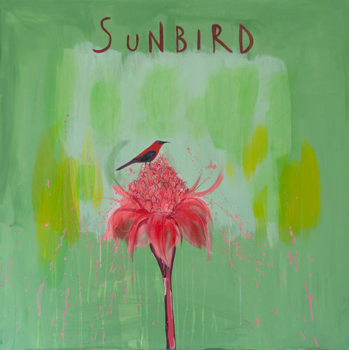 Clare Haxby Sunbird Painting and Art Print