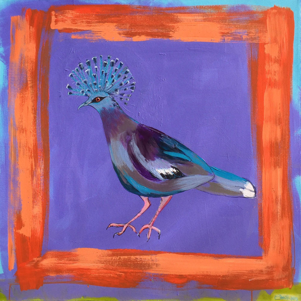 Victoria Crown Pigeon art print by Clare Haxby