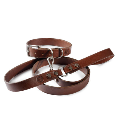 Holden Large Dog Collar & Lead - Chestnut