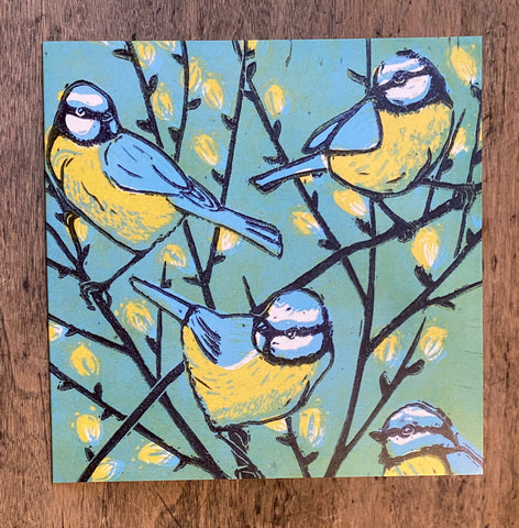 Blue Tit - Willow Card