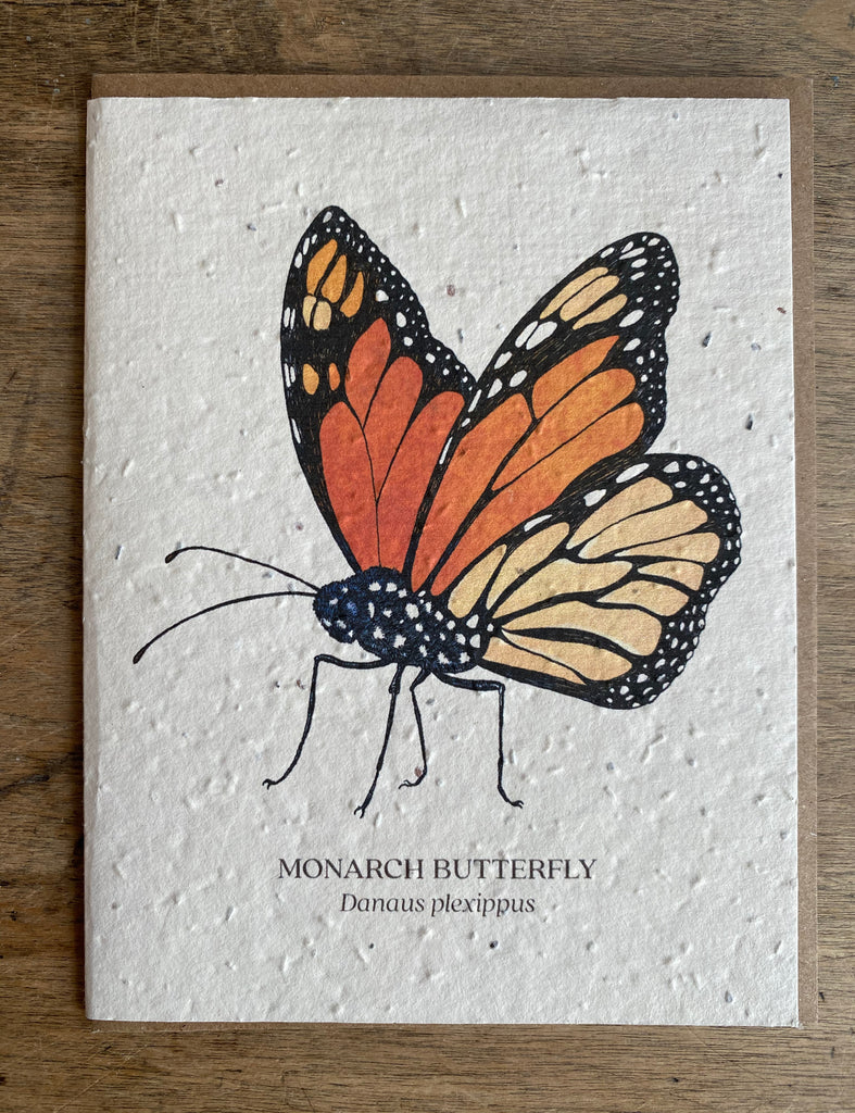 Butterfly - Seed Card