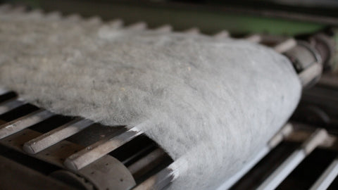 carded wool on conveyor belt