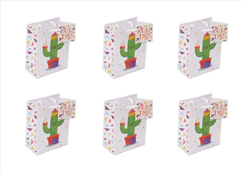 Pack of 6 - Fun Cactus Party Gift Bags