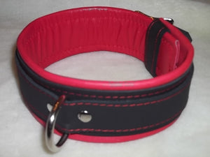 "2"" Wide Collar"
