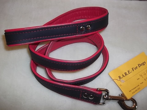 Leather Lined Leash