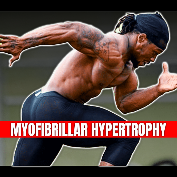 Understanding the STRENGTH of MyoFibrillar Hypertrophy