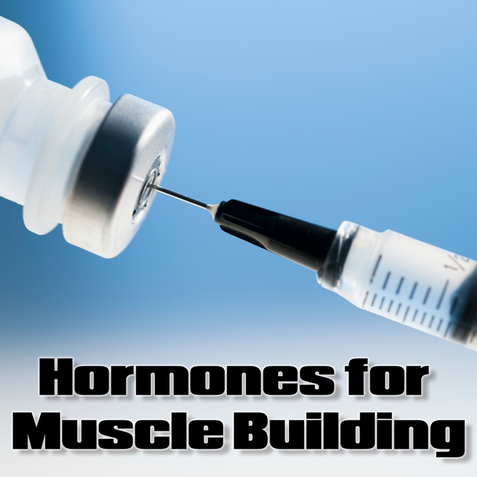 Hormones for Muscle Building