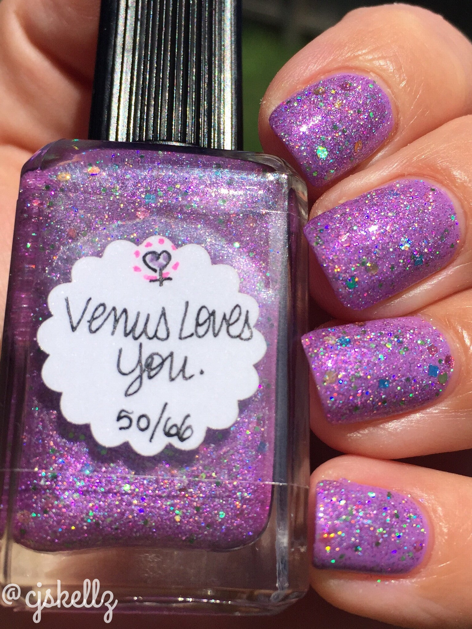 Special Edition—Venus Loves You