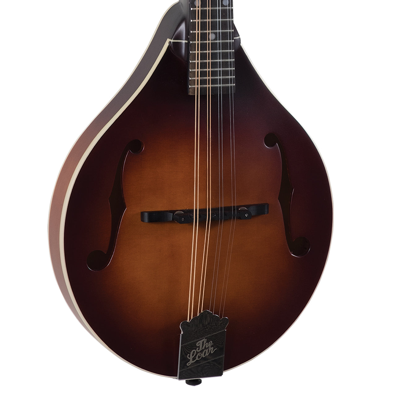 Loar A-Body Mandolin With Solid Top LM-110E-BRB, Pickup