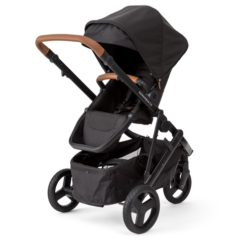 edwards and co mx stroller