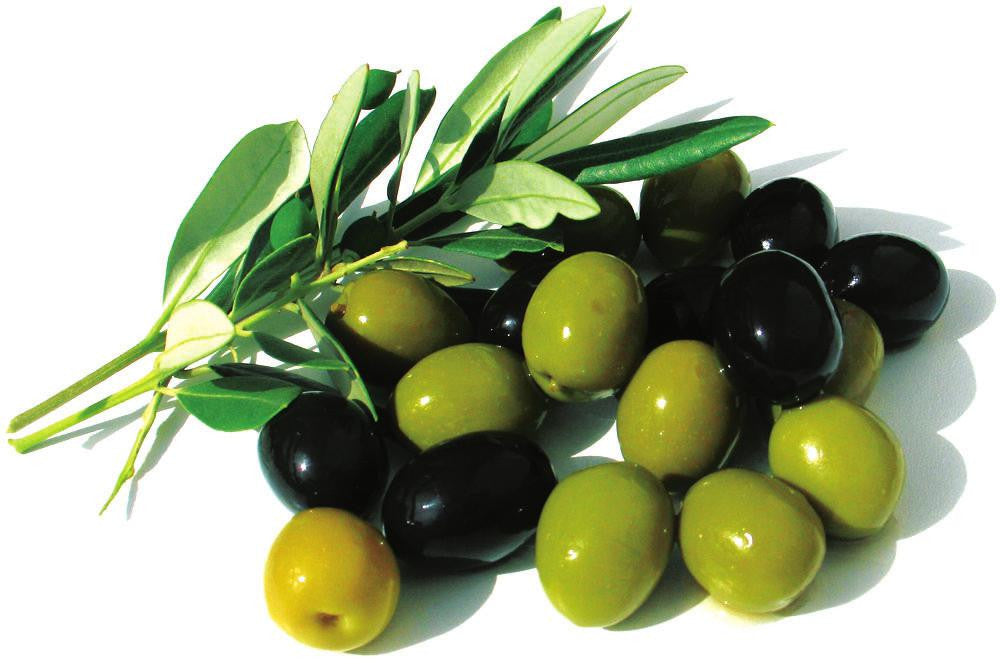 Ingredient Knowledge: Organic Olive Oil, our offering to nourish your skin