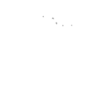 The OSHIBORI Company, LLC.