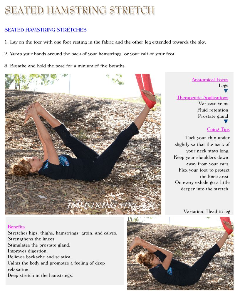 Aerial Restorative Yin Training Course - Uplift Active