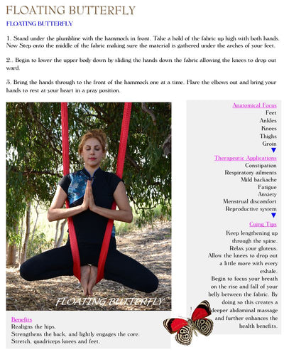Aerial Yoga Academy Teacher Training Course - Aerial Yoga Gear