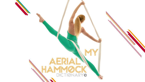 My Aerial Hammock Dictionary Book