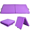 Overview Purple Folding Two Panel Gymnastics Mat - Aerial Yoga Gear - Uplift Active