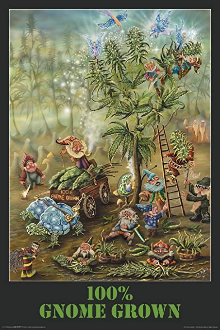 "Gnome Grown 24"" x 36"" Poster"