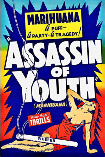 "Assasin of Youth 24"" x 36"" Movie Poster"