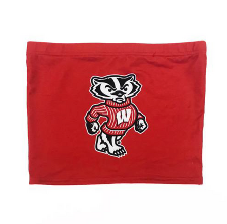Wisconsin Badgers Bucky Tube Top