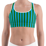 Green & Blue Striped Sports Bra