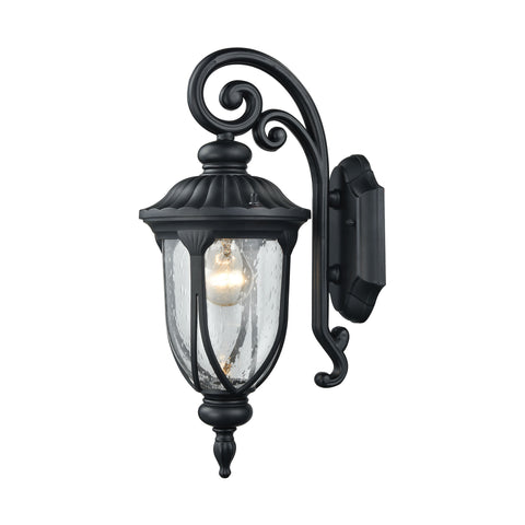 ELK Lighting 87100/1 Derry Hill Collection Matte Black Finish - PeazzLighting