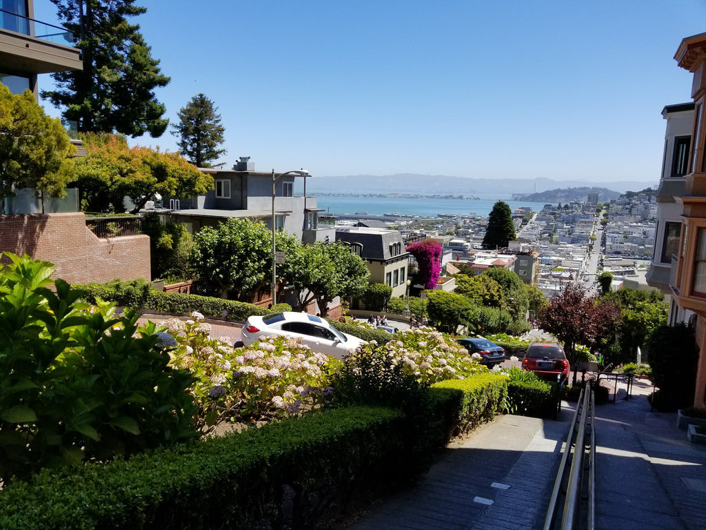 Best Places for San Francisco View Lombard Street
