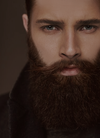beard Oil - The Man Company