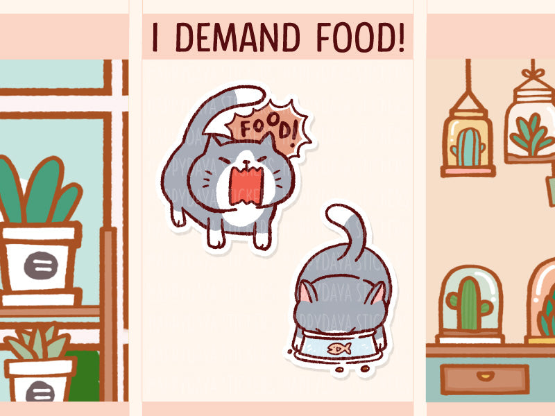 FI097: Feed cat / Cat eating food