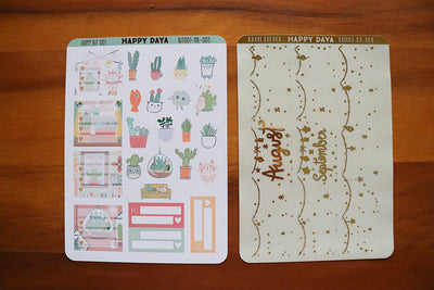 KIT001 (Cactus & succulents) : Monthly kit (August or September19)