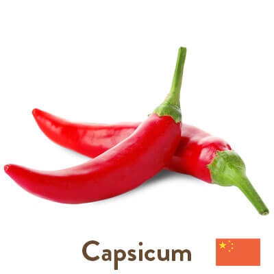 capsicum sourced from China