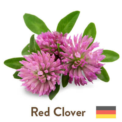 red clover sourced from Germany