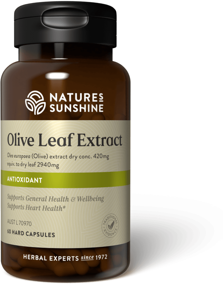Bottle of Nature's Sunshine Oilive Leaf Extract