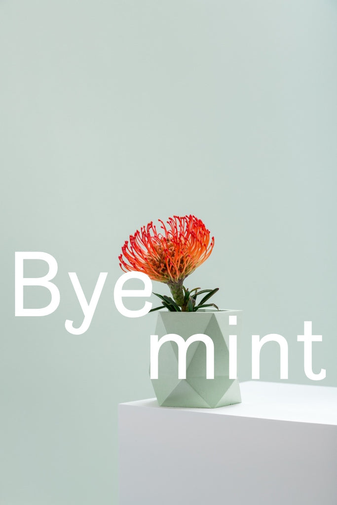 Goodbye mint & salmon