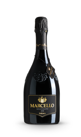 LAMBRUSCO FRIZZANTE MILLESIMATO MARCELLO ARIOLA (2019) ; ML. 750