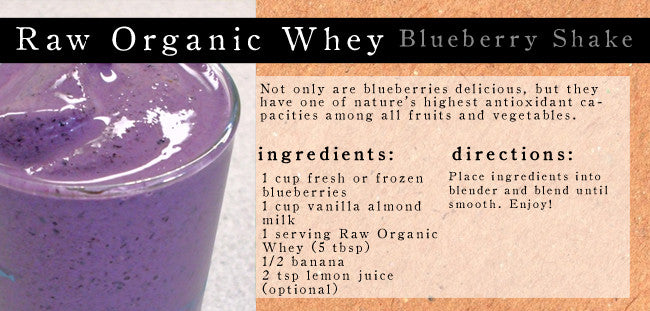 Raw Organic Whey Blueberry Smoothie
