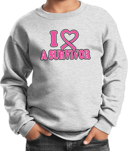 Buy Cool Shirts Kids Breast Cancer Sweatshirt I Heart a Survivor