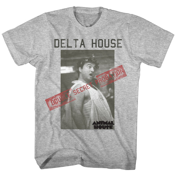 Animal House Tall T-Shirt Double Secret Probation Gray Heather Tee