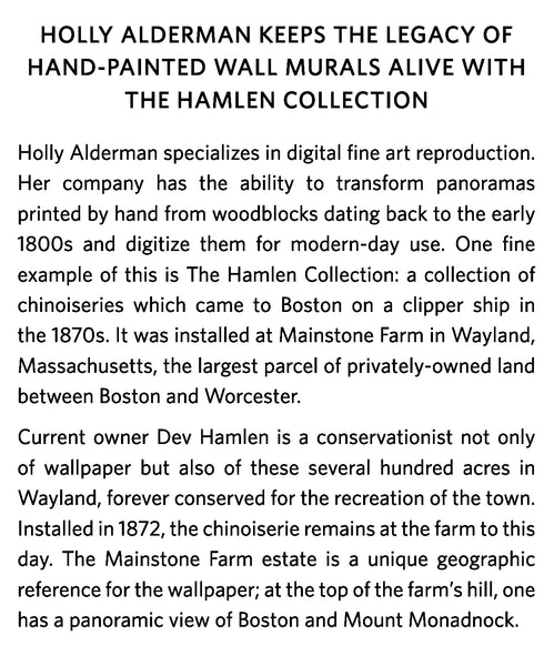 Holly Alderman Hamlen chinoiserie collection tranfpormed from hand painted